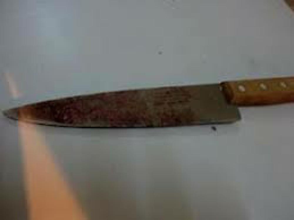 Servente morto a faca