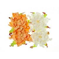 http://www.artimeno.pl/pl/kwiatki/3601-scrapberry-s-gardenia-peach-white-4szt-7cm.html