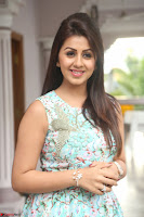 Nikki Galrani at Prema leela pelli gola trailer Launch ~  Exclusive 064.JPG