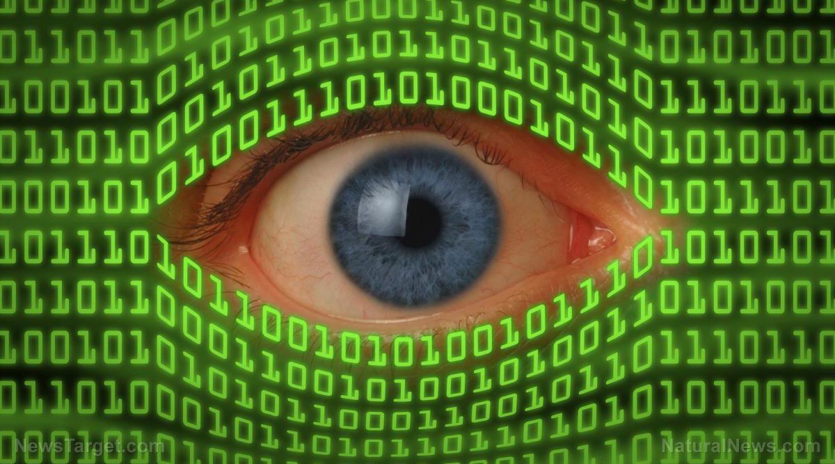 Levidenza indica che il Bitcoin è uno psyop ingegnerizzato dalla NSA per implementare la valuta digitale mondiale