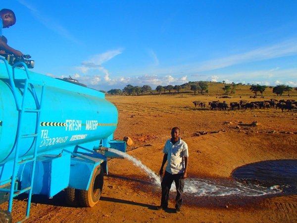 Homem conduz várias horas por dia para levar água a animais