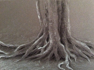 Step 2 - Charcoal sketching of exposed roots of a tree by Manju Panchal
