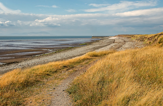 Photo of sun-baked grasses on the shore at Maryport on Thursday