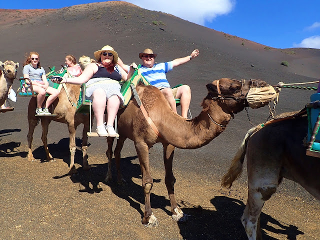 What to do in Arrecife Lanzarote Timanfaya National Park Camel Ride Coach Tour Plus size Travel blogger The Owlet