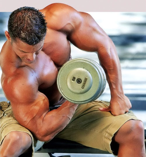 Best Biceps workout routines