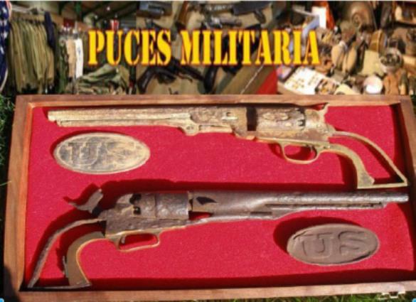 Puces militaria