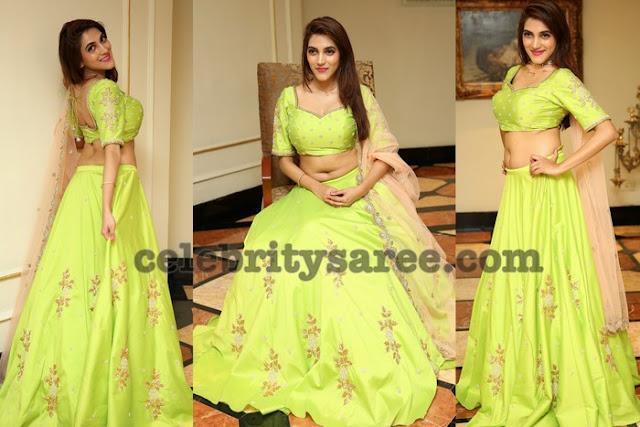 Sita Narayan Neon Green Lehenga