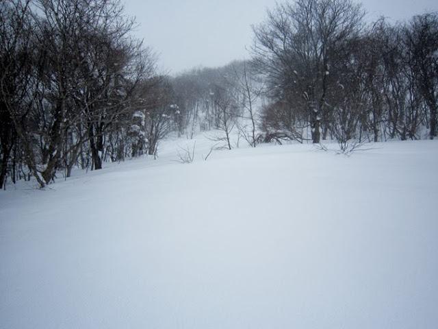 スキーコースを外れて