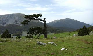 Cammini Calabresi e Lucani