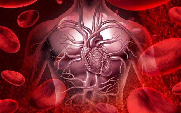 diabetes y problemas cardiovasculares