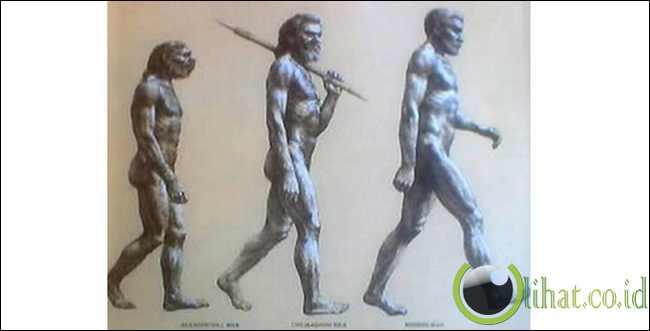 "Evolusi mengakibatkan sesuatu beranjak dari ""rendah"" ke ""tinggi"""