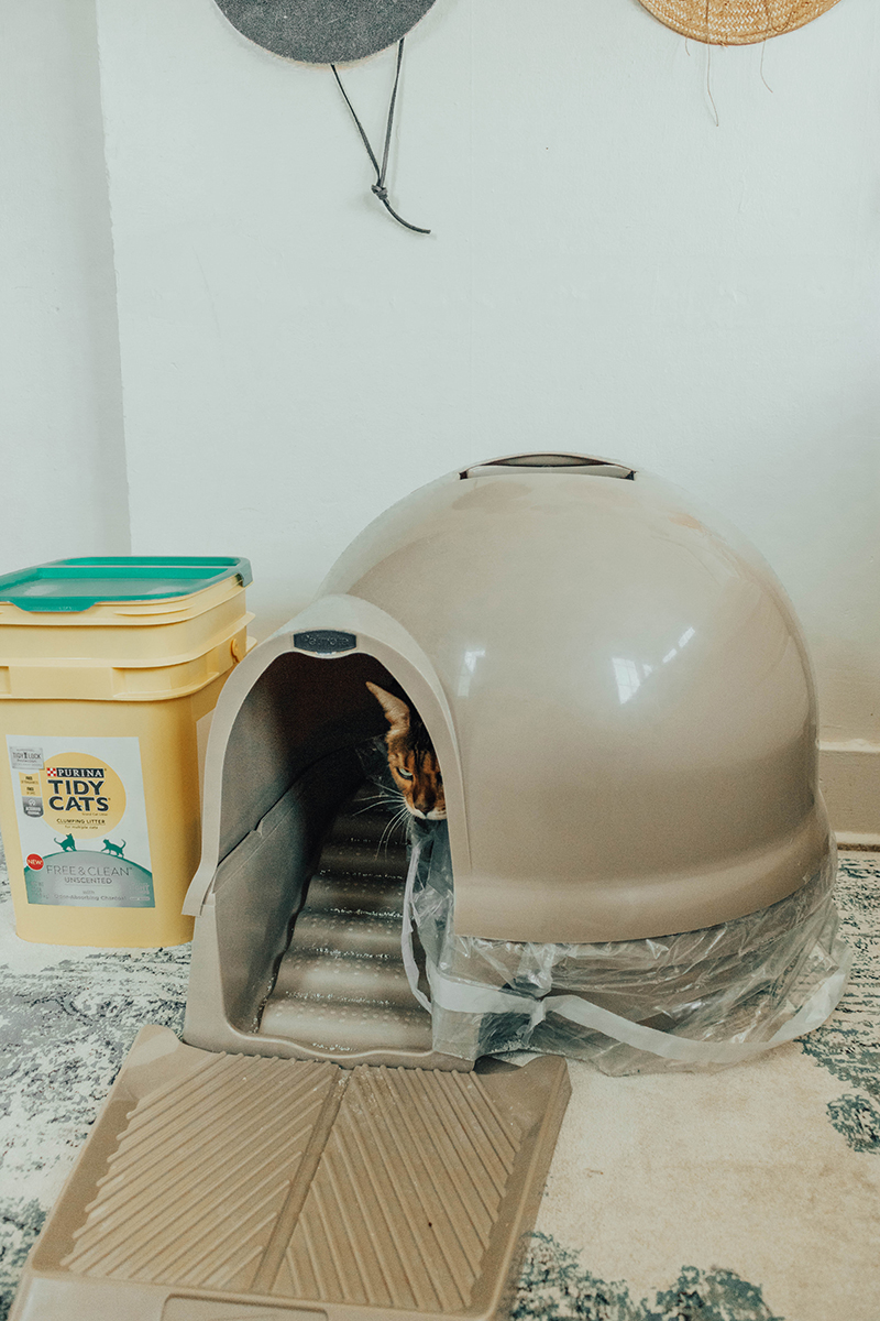 kitty litter box with top, large cat litter box, how to prevent litter spillage