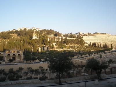 Jalan Jalan Bukit Zaitun Yerusalem