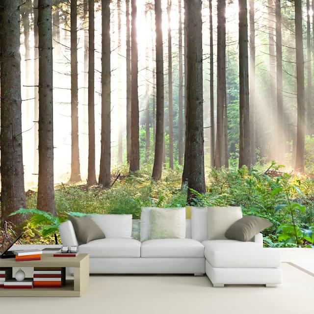 Fototapet Skog tapet trädstammar vardagsrum