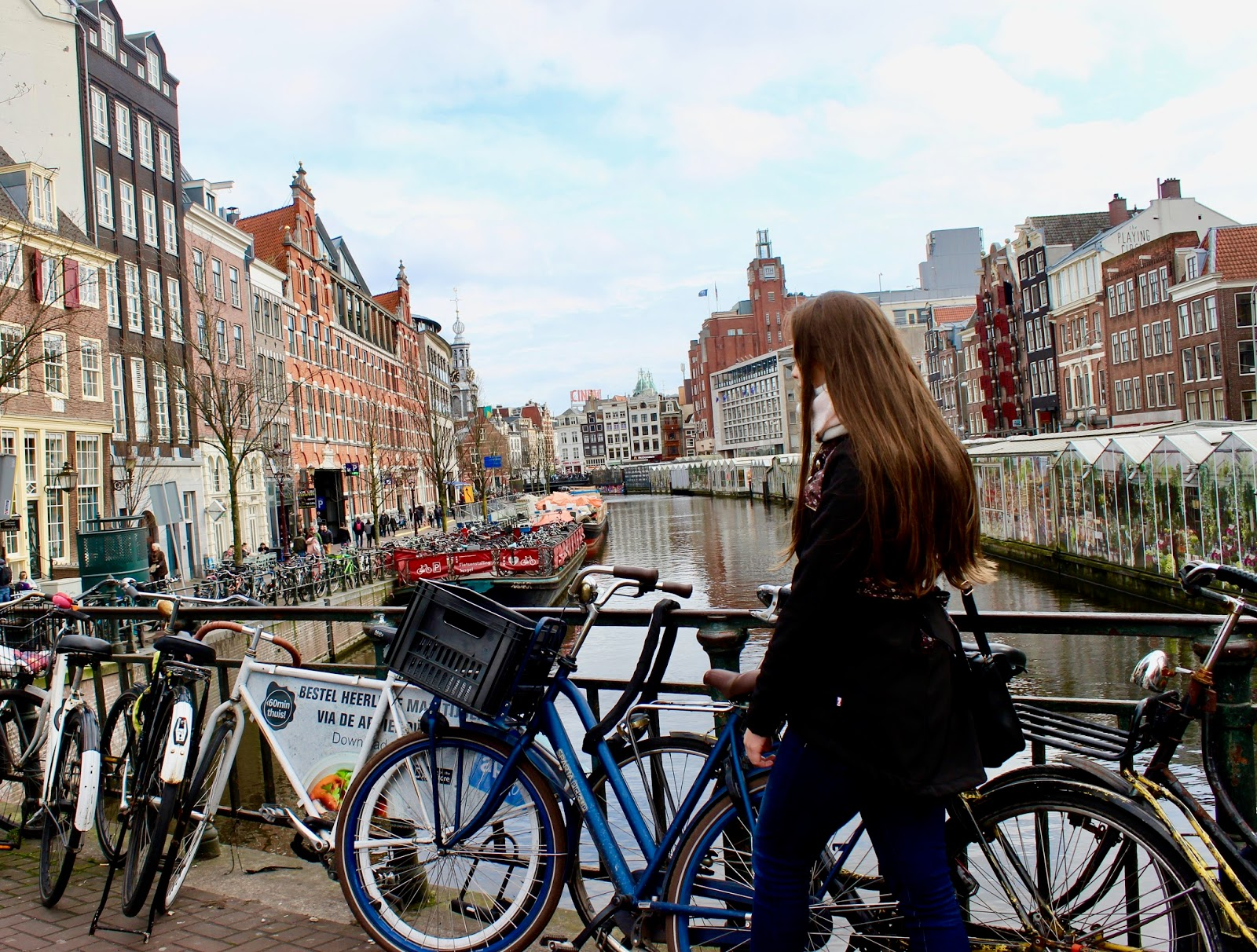 Canals of Amsterdam Bridge