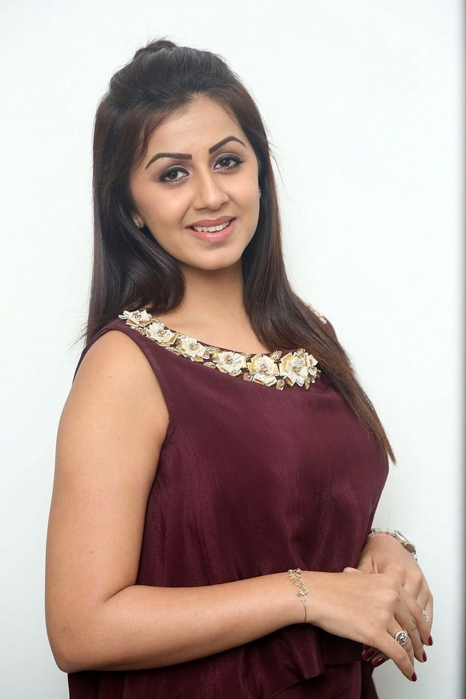 Nikki Galrani at Team 5 Movie Press Meet Gallery