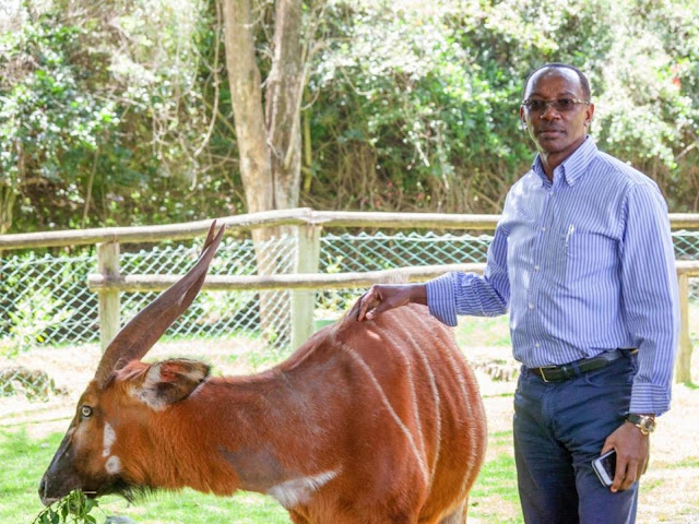Shock As DCI Confirm BlueMoon Billionaire Kariuki Is A Cyprus Citizen