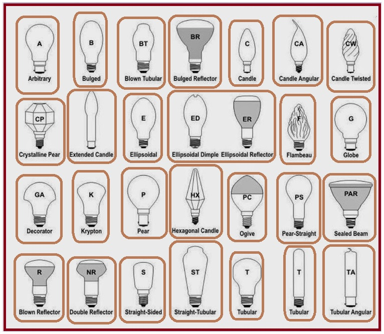 Different Types of Bulbs - EEE COMMUNITY