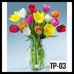 Katakan Cinta mu dengan Bunga Tulip