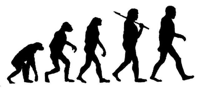 مفهوم التطور