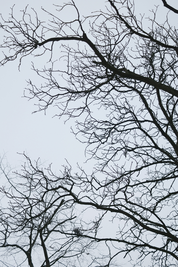 Blog + Fotografie by it's me! - Draussen - Frau Frieda sucht Schnee, bleierner Winterhimmel