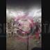 Αχαΐα: Μιμήθηκε τον μακελάρη της Νίκαιας και μπούκαρε με το αμάξι του (Βίντεο)