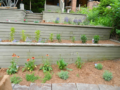 The Beach Toronto Tiered Front Garden After by Paul Jung Gardening Services--a Toronto Gardening Company