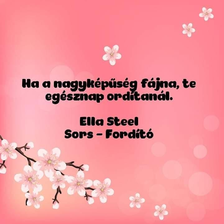 idézetek nagyképűség Magyar Szerzők Könyvei Blog: Képes idézet:Ella Steel: Sors   Fordító
