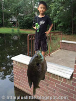 my son's first catch bluegill in March 2015 near our community pond