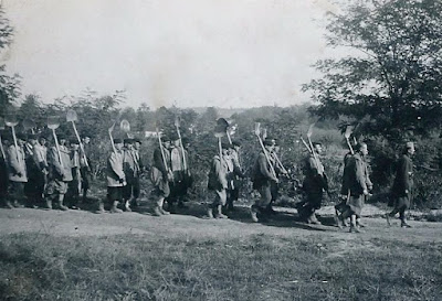 Hungarian labor Battalions