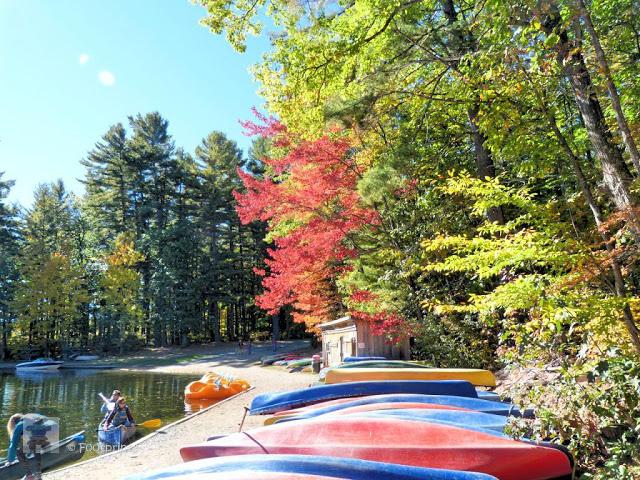 Es gibt  2 Car Campsites im Park und ausserdem die Moegichkeit des Interior Canoe-in oder Hike-in campings. Wer etwas comfortabler uebernachten moechte, kann hier auch Yurts oder Cabins mieten.