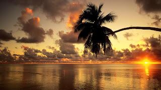 Amazing nature sunset time photos