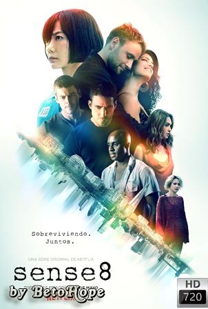 Sense8 Temporada 2 [720p] [Latino-Ingles] [MEGA]