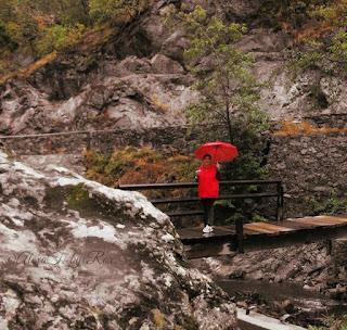 Bridge over the River Rudăria. Pod peste râul Rudăria. On the Rudăria River in the village Eftimie Murgu, Caras-Severin there is a historical reserve that comprising more water mills.. Pe râul Rudăria, în comuna Eftimie Murgu, Caraş-Severin există o rezervaţie mulinologică cuprinzând mai multe mori de apă cu ciutură orizontală.