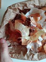 Decotto di bucce di cipolla per l'orto biologico.