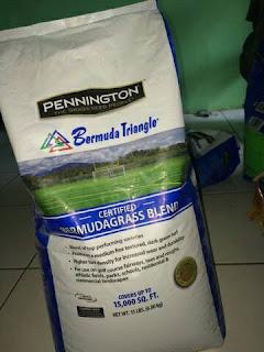 harga biji rumput bermuda grass seed