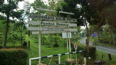 Agrowisata Salib Putih
