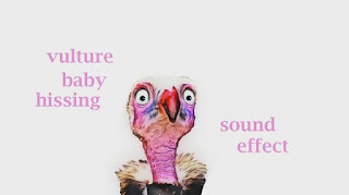 learn vulture sounds