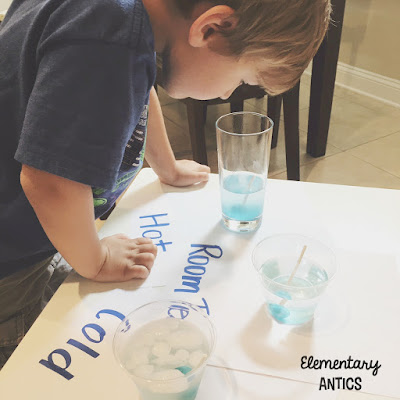 Have fun this summer and explore the scientific method with a lollipop science experiment!