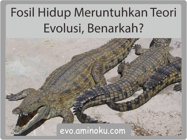 Fosil hidup meruntuhkan evolusi