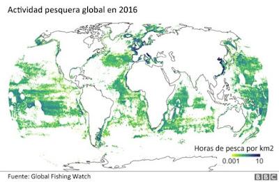 ¿Sabía usted que solo 5 países atesoran el 85% de la pesca industrial del mundo?