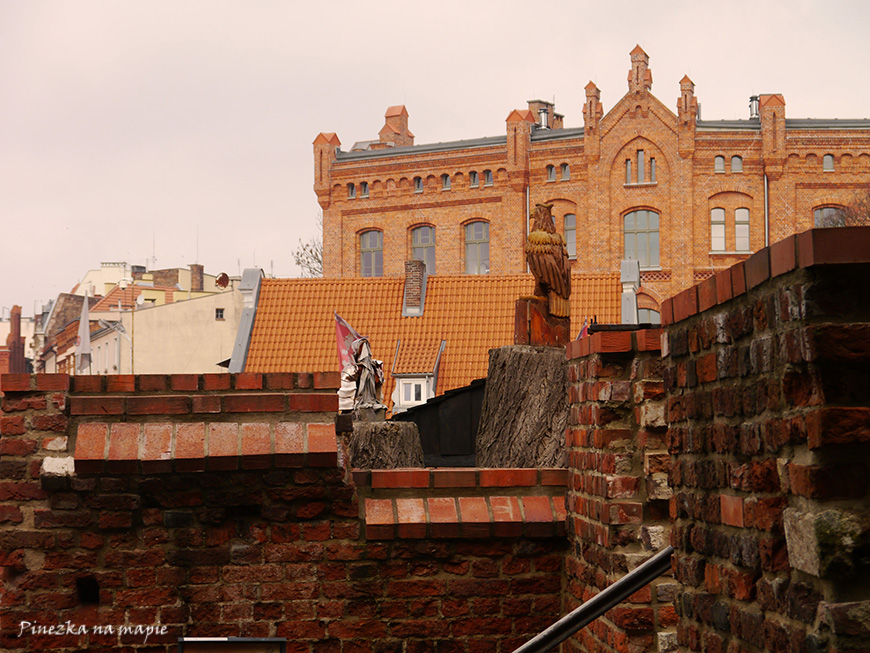 Zamek w Toruniu cennik