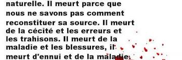 Poème d♥amour