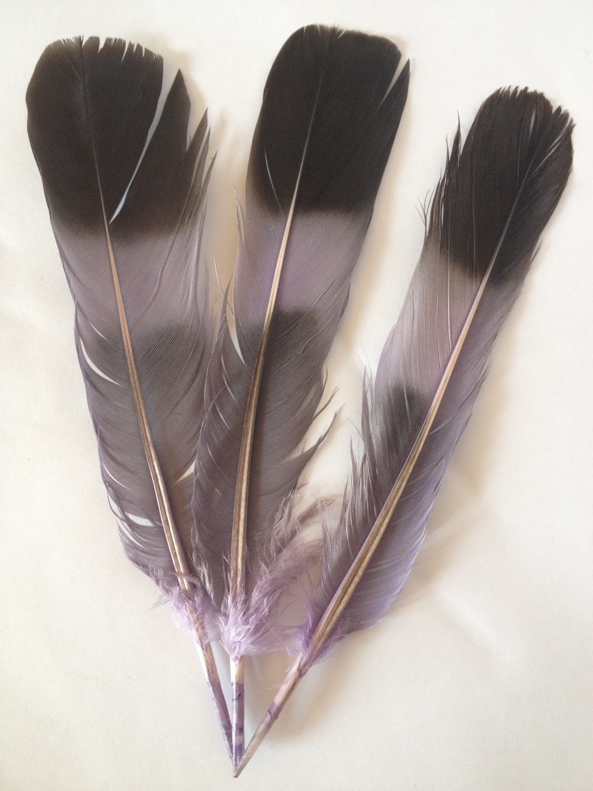 Me and my shadow: How to dye feathers