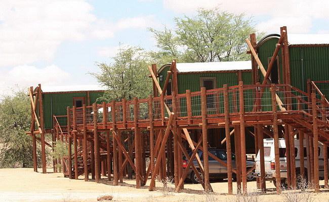 Xvlor Kgalagadi Transfrontier Park
