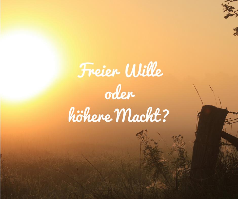 Anja Reiche: Freier Wille oder höhere Macht?