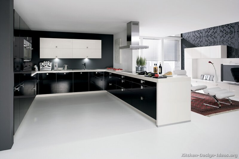 Black And White Kitchen Cabinets Apartment Interior Design
