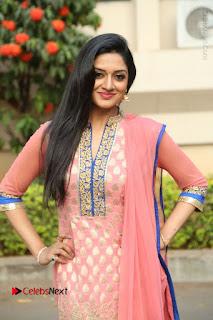 Actress Vimala Raman Stills in Beautiful Pink Salwar Kameez at (ONV) Om Namo Venkatesaya Press Meet  0087.JPG