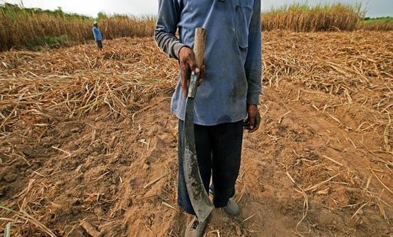 Senjata Tradisional Riau Kelewang