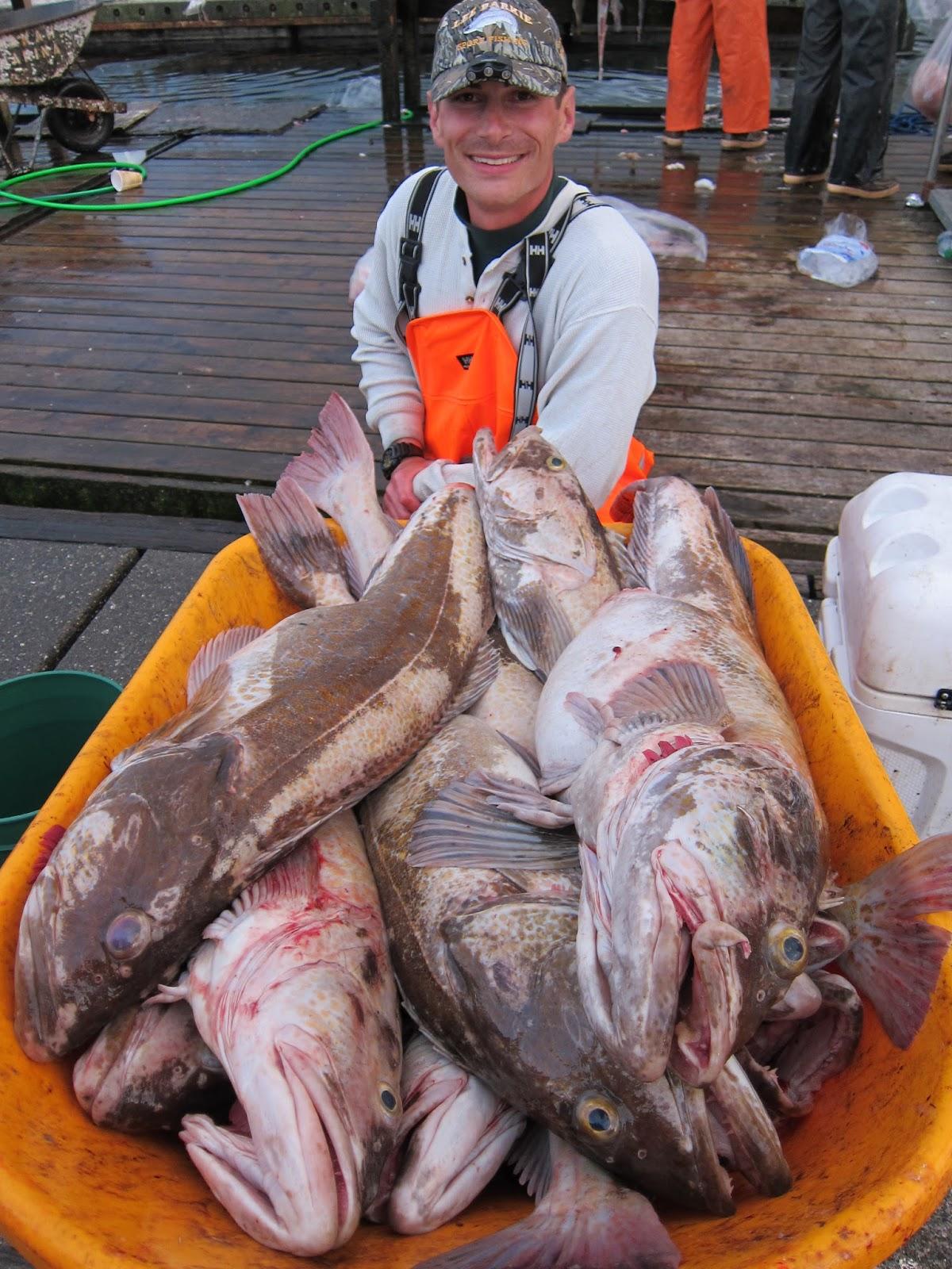 Halibut Fishing Spots